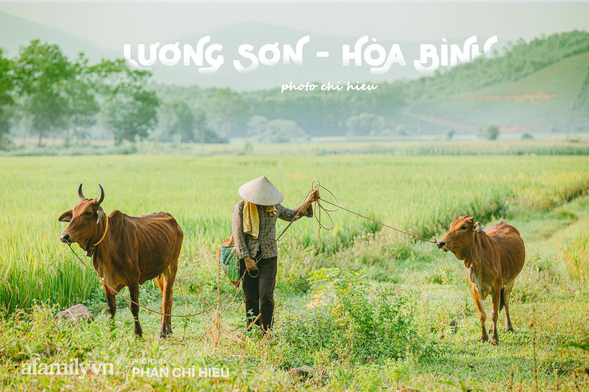 """Ngôi làng độc nhất Việt Nam sở hữu """"CHIẾC CỔNG"""" CÒN SỐNG SUỐT 800 NĂM, được công nhận là di sản và là bối cảnh của không biết bao nhiêu bộ phim đình đám - Ảnh 10."""