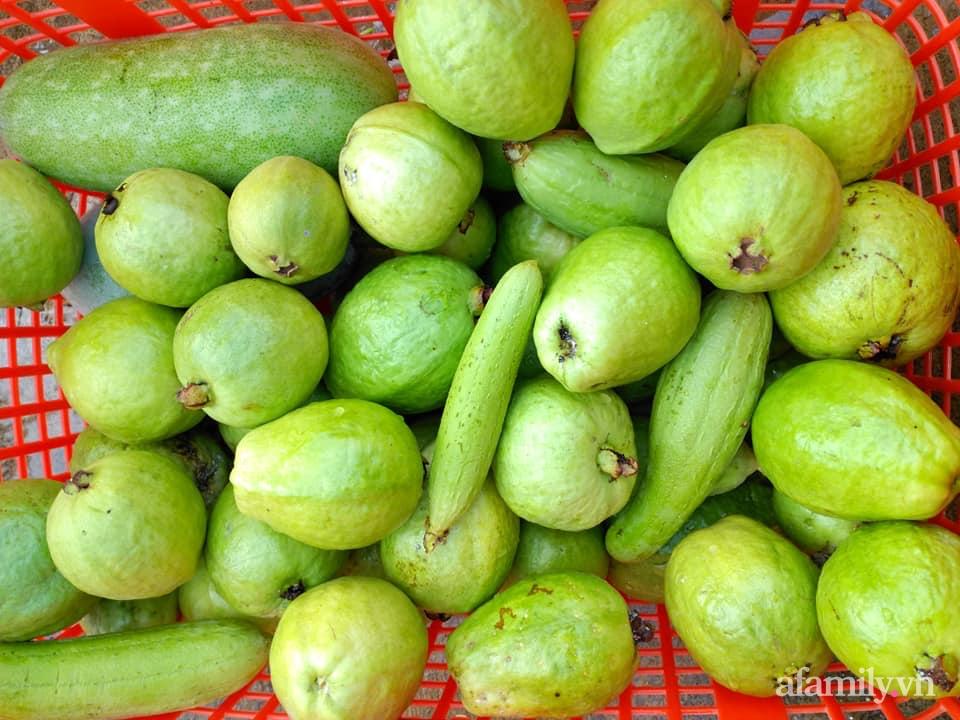 Vườn cây ăn quả 130m2 trên sân thượng quanh năm xanh mát ở quận 9, Sài Gòn - Ảnh 12.