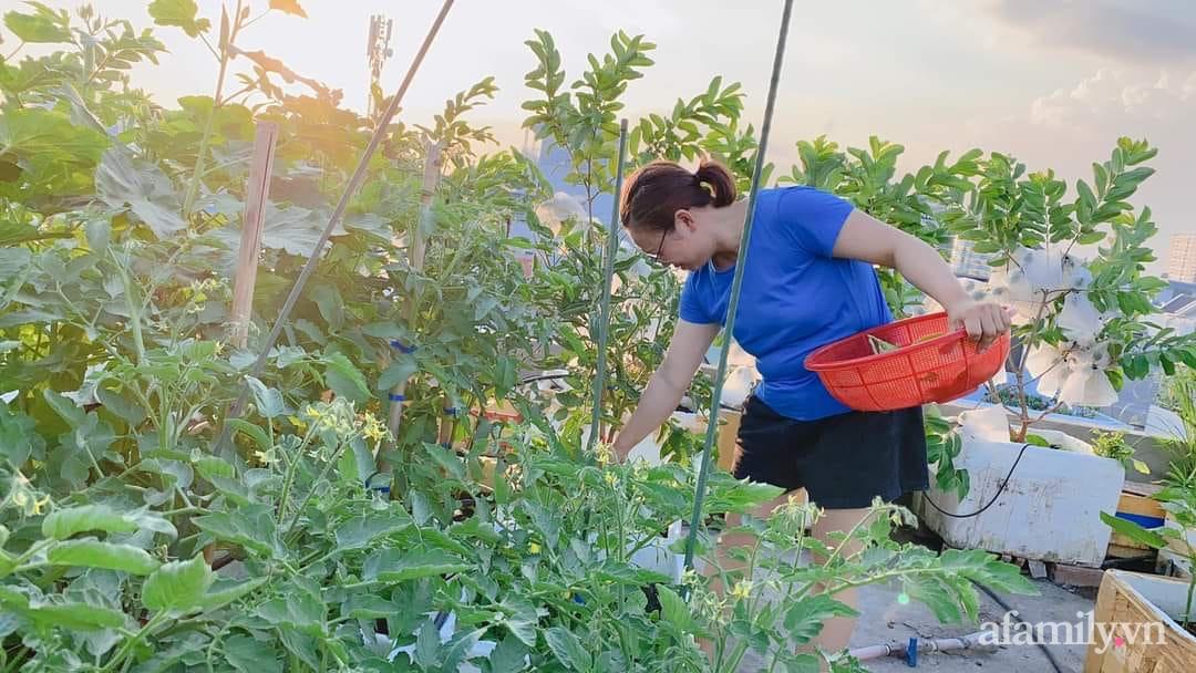 Vườn cây ăn quả 130m2 trên sân thượng quanh năm xanh mát ở quận 9, Sài Gòn - Ảnh 11.