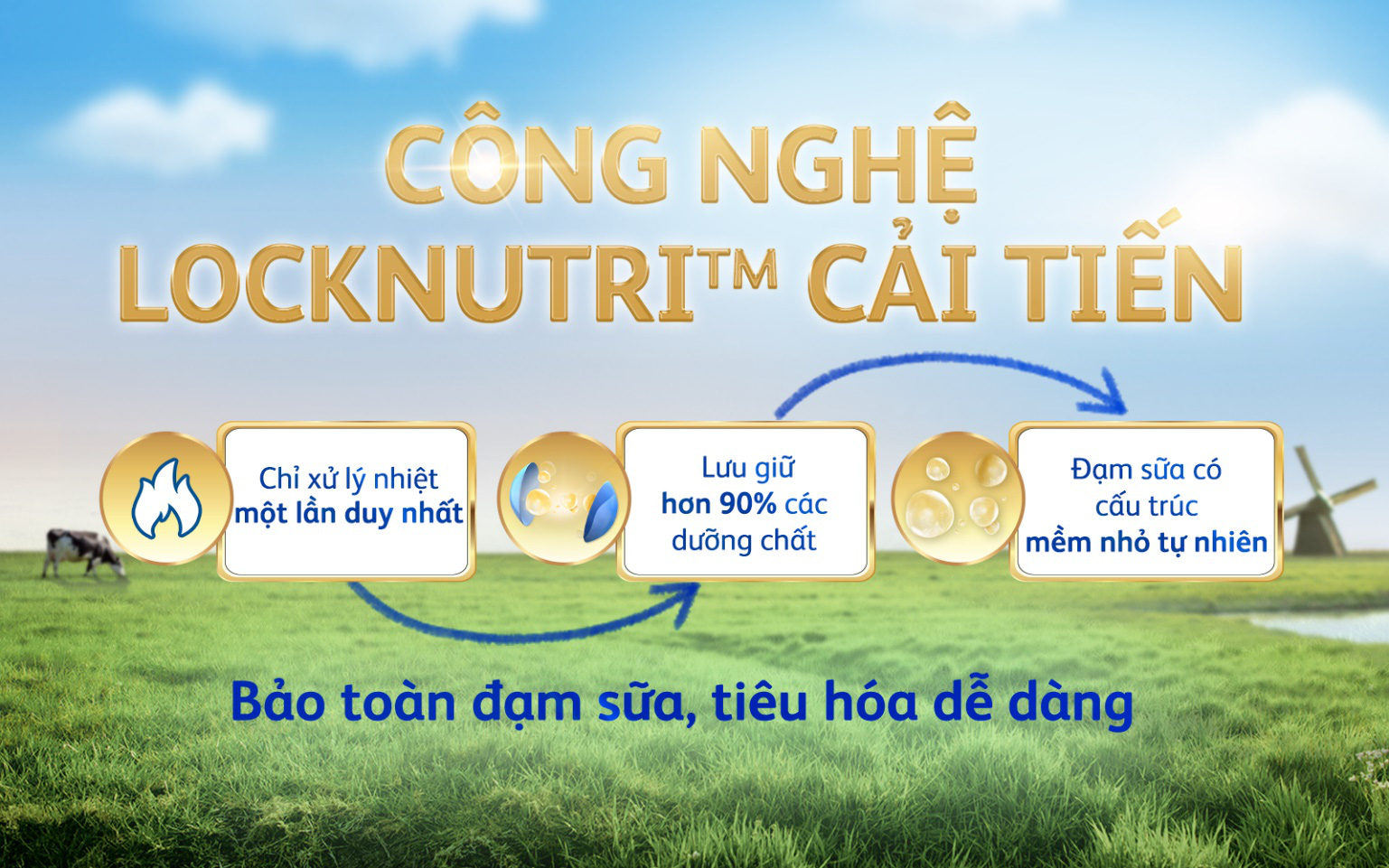 Friso Gold mới với nguồn sữa NOVAS 100% từ Châu Âu giúp bé dễ tiêu hóa - Ảnh 3.