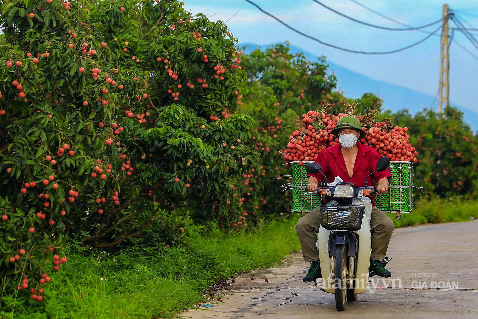 Chợ vải Bắc Giang nhộn nhịp vào mùa - Ảnh 3.