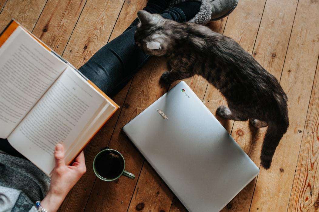"""Thời người ta """"dám"""" chi 85 triệu cho 1 cuốn sách và trend """"đóng cửa tĩnh lặng đọc sách"""" lên ngôi vào những ngày giãn cách! - Ảnh 2."""