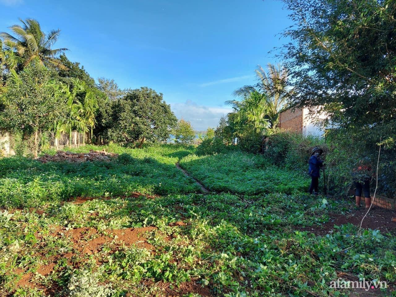 """Vì muốn sống gần thiên nhiên, 5 cô gái đã """"hùn vốn"""" biến mảnh đất trống thành khu vườn xanh mát ở Buôn Mê Thuột - Ảnh 1."""