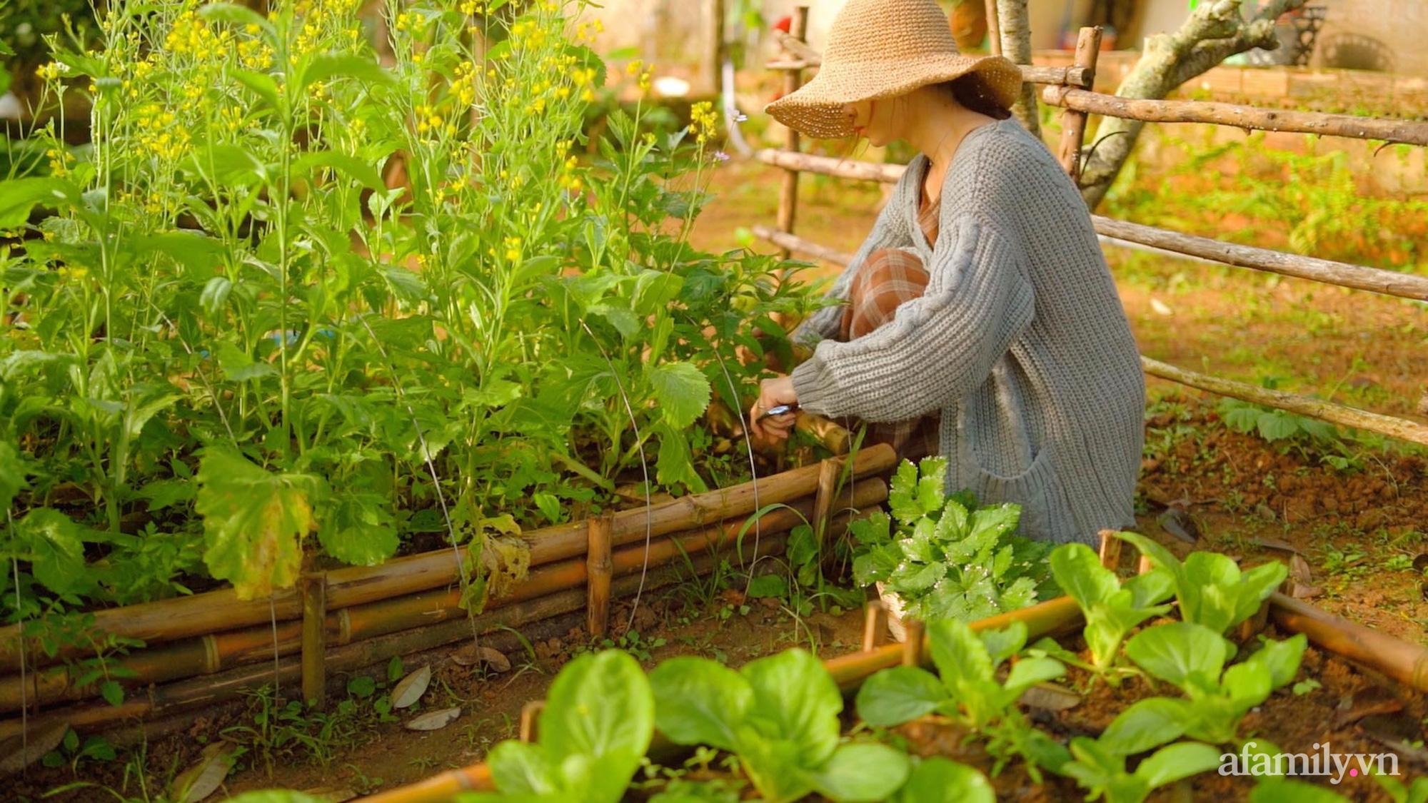 Chán cuộc sống bon chen ở phố, cặp vợ chồng 9X có thu nhập ổn định quyết định chọn về quê sống bình yên bên vườn tược ở Đắk Lắk - Ảnh 1.