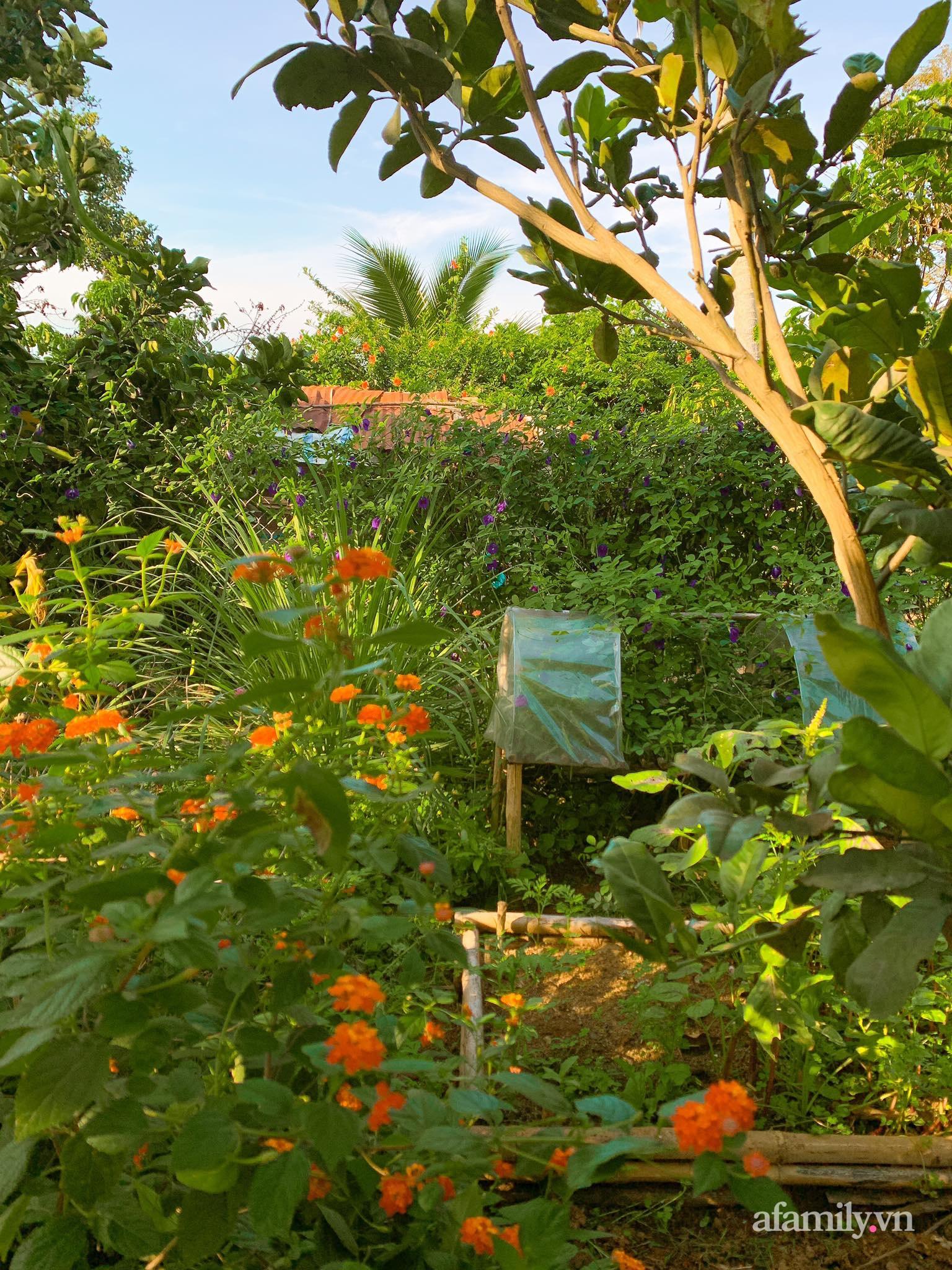 Chán cuộc sống bon chen ở phố, cặp vợ chồng 9X có thu nhập ổn định quyết định chọn về quê sống bình yên bên vườn tược ở Đắk Lắk - Ảnh 15.