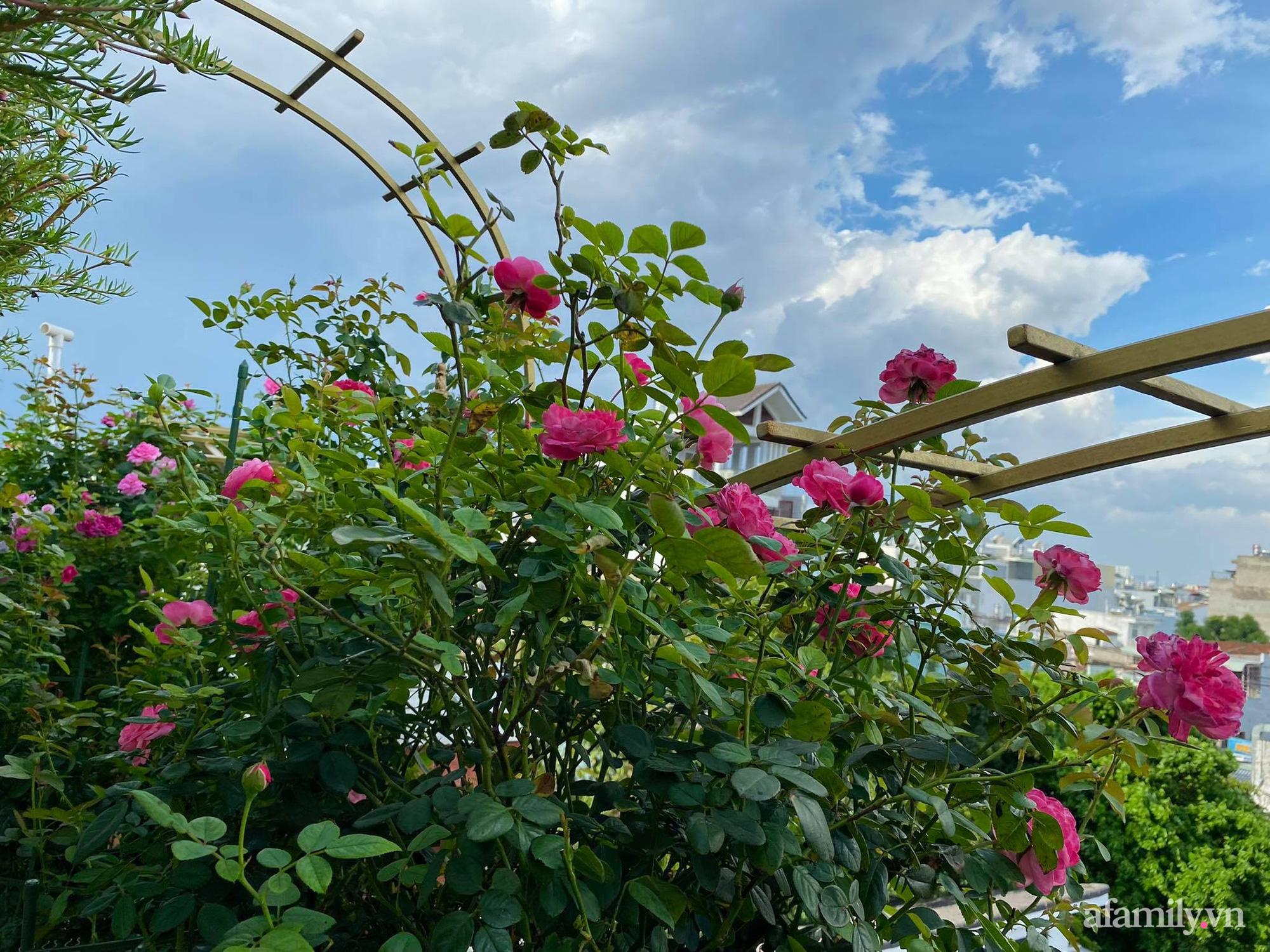 Sân thượng phủ kín hoa hồng và rau quả sạch được chăm chút nhờ bàn tay khéo léo của Hoa hậu Janny Thủy Trần - Ảnh 10.