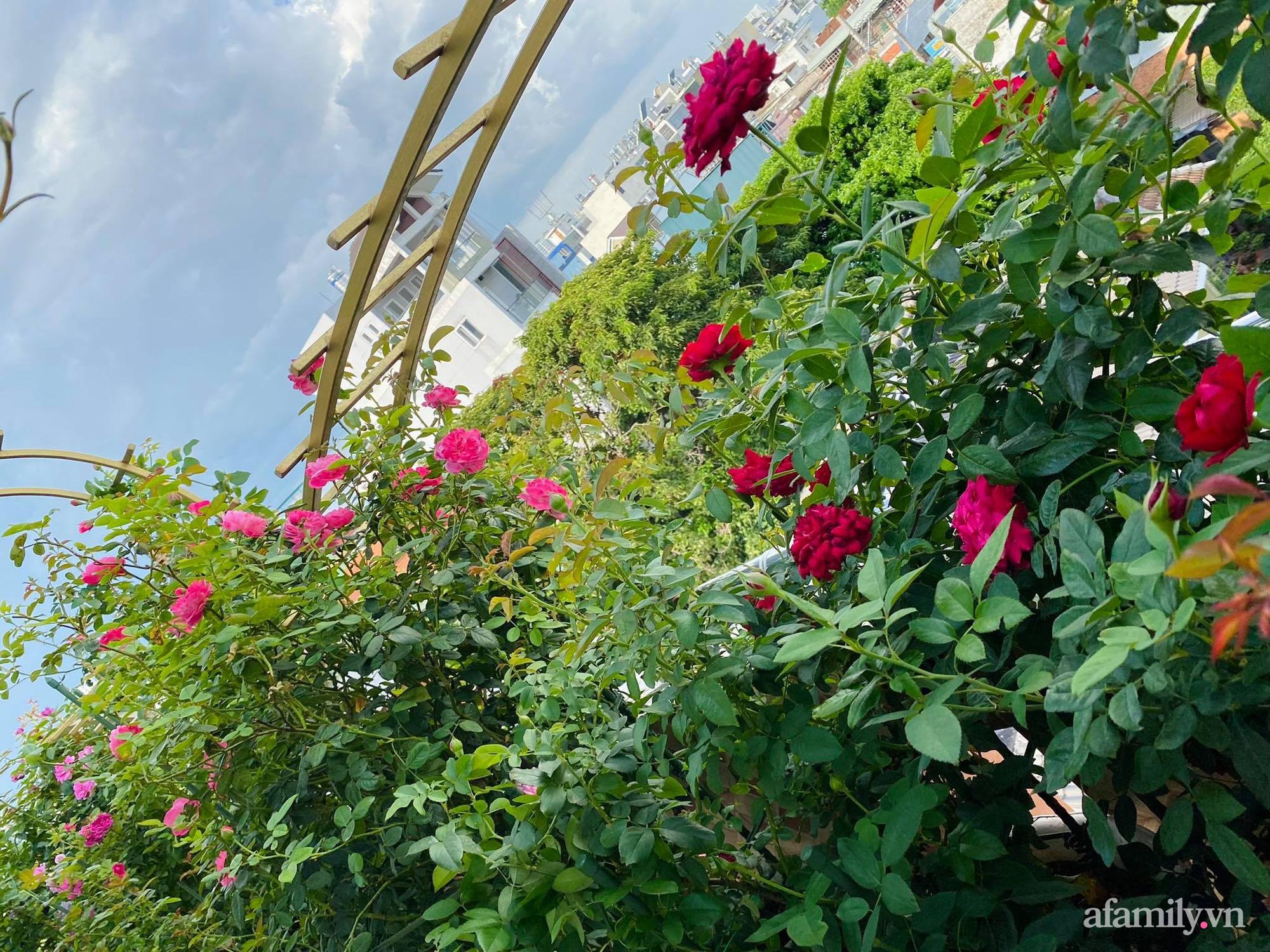 Sân thượng phủ kín hoa hồng và rau quả sạch được chăm chút nhờ bàn tay khéo léo của Hoa hậu Janny Thủy Trần - Ảnh 6.