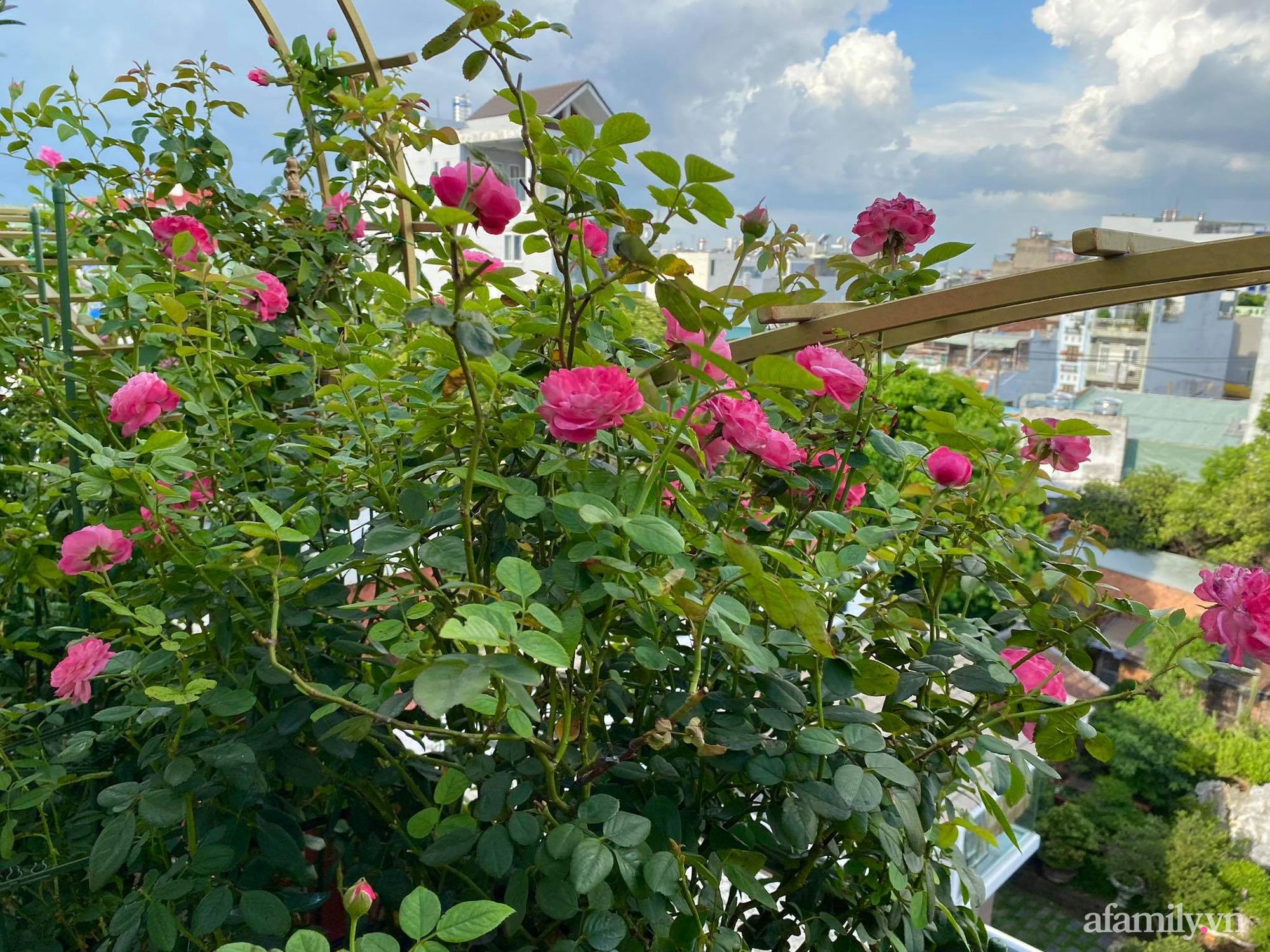 Sân thượng phủ kín hoa hồng và rau quả sạch được chăm chút nhờ bàn tay khéo léo của Hoa hậu Janny Thủy Trần - Ảnh 5.