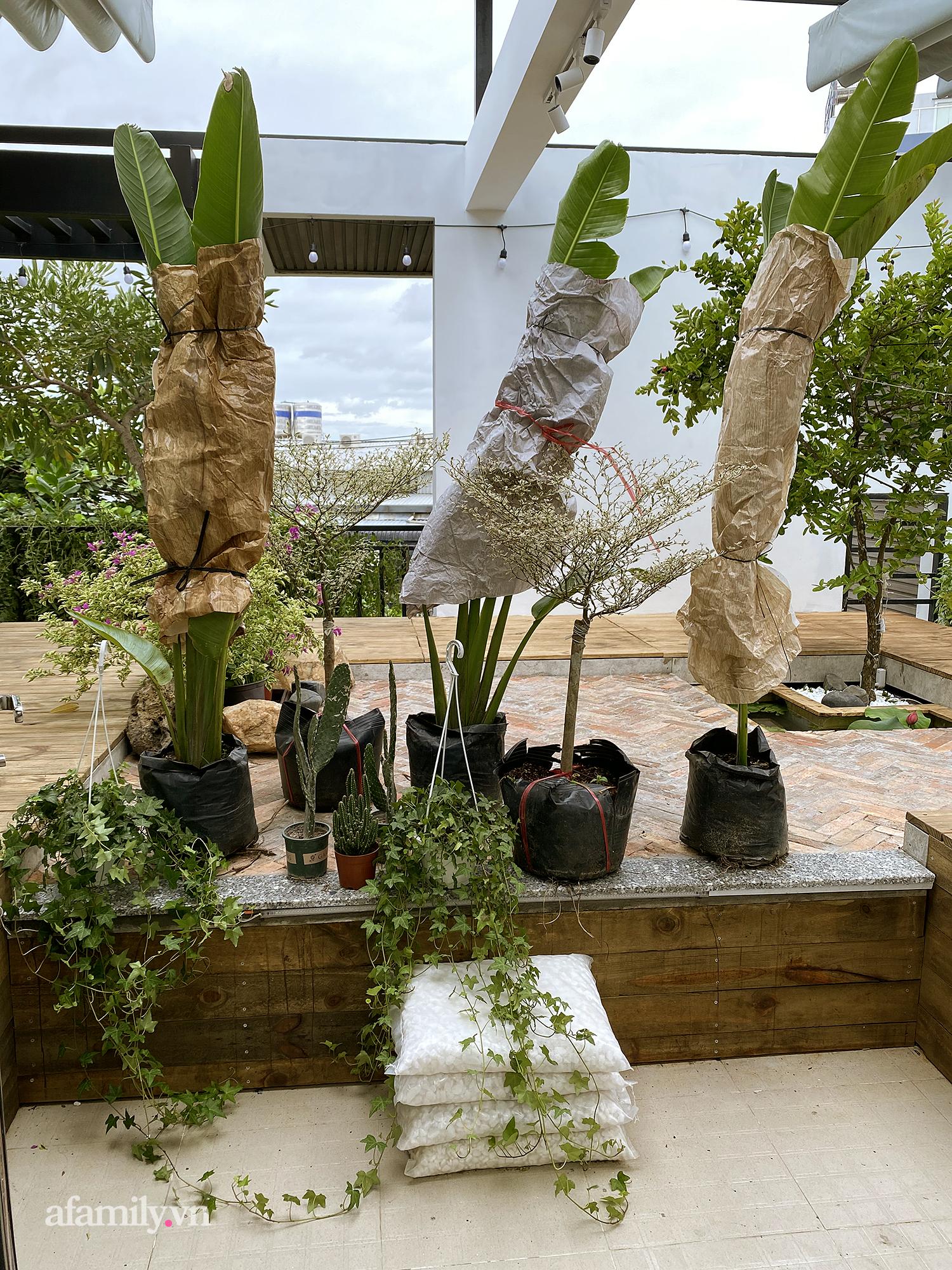 """Quá trình 2 năm phủ xanh căn nhà của một gia đình tại Sài Gòn: Dùng xe cẩu thả cả cây cao 8m từ nóc nhà tầng 3 xuống tầng trệt, biến sân thượng thành """"công viên"""" vì Covid - Ảnh 9."""