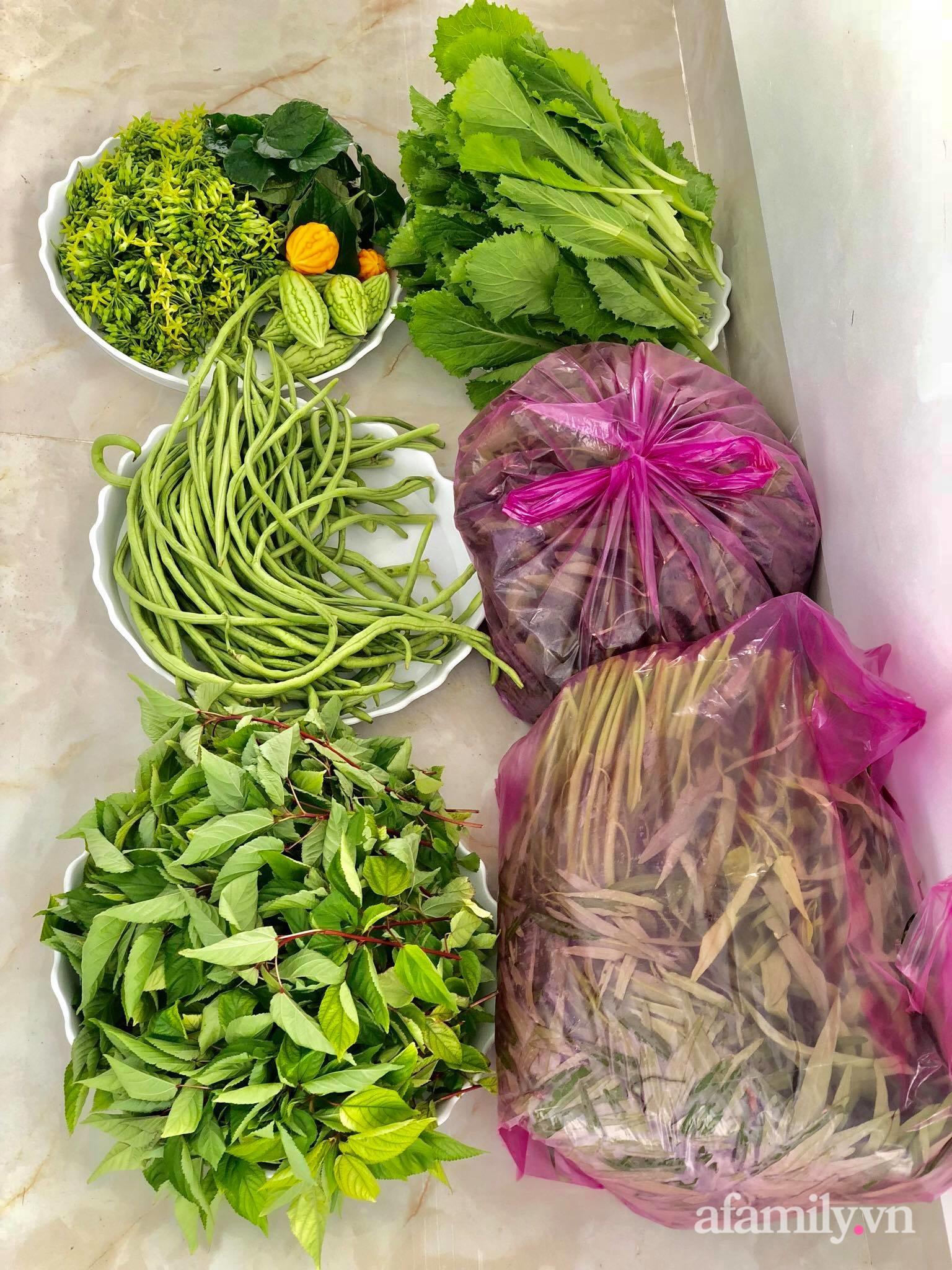 """Trước giãn cách 20 ngày, mẹ đảm Sài Gòn """"nhanh tay"""" trồng đủ loại rau tới giờ """"um tùm"""" ăn thoải mái lại tiết kiệm tiền - Ảnh 1."""