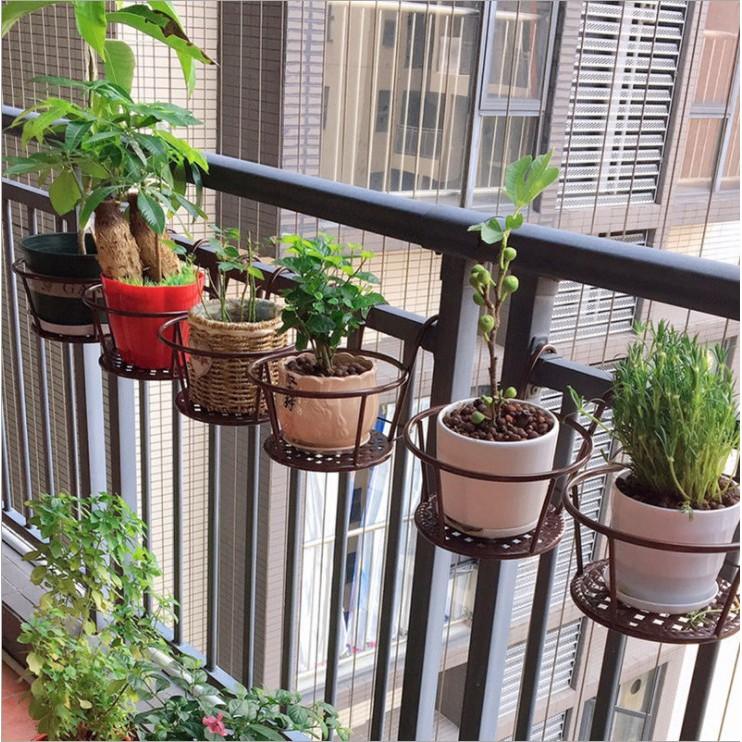 5 mẫu kệ giúp bạn chỉ vài phút là tối ưu không gian trồng cây trong nhà, đẹp đến mức nhìn là muốn mua ngay - Ảnh 2.