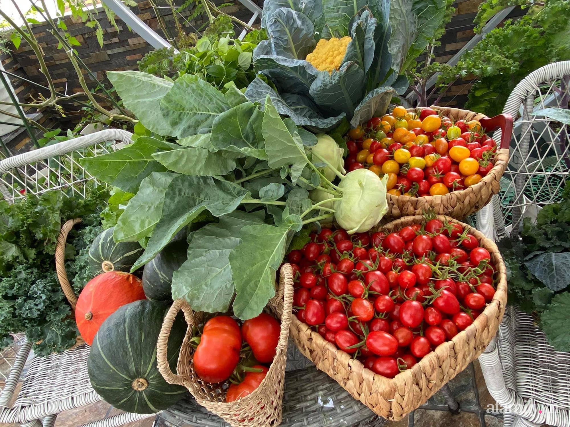 Giãn cách không ra khỏi nhà vẫn đủ rau quả thưởng thức nhờ vườn cây xanh um trên sân thượng ở Đà Nẵng - Ảnh 15.