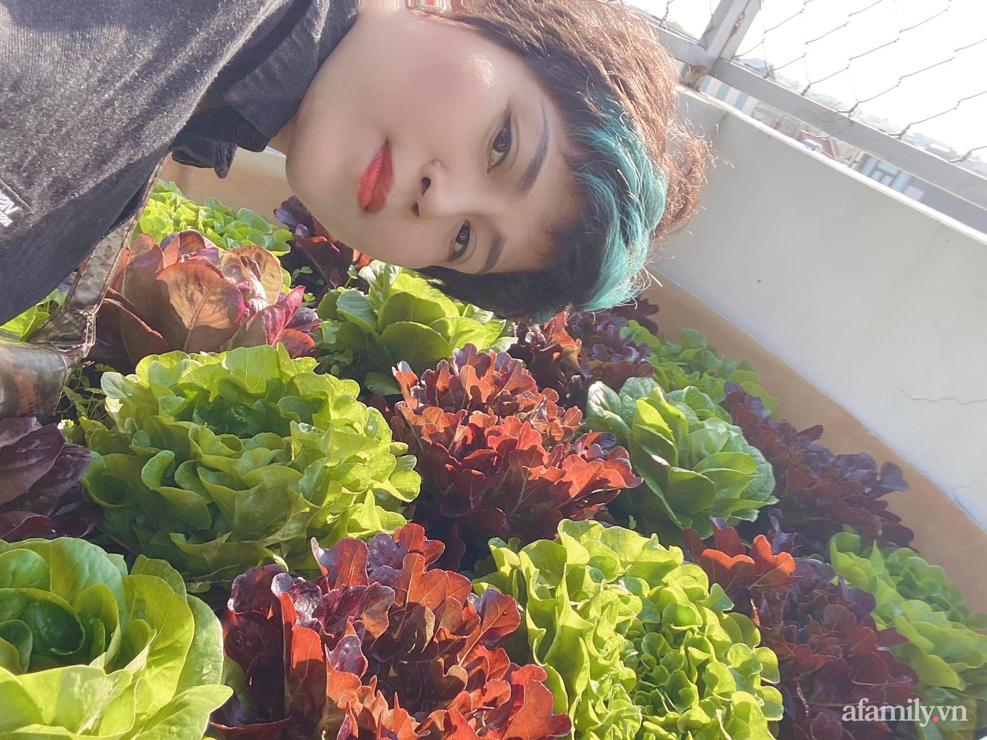 Giãn cách không ra khỏi nhà vẫn đủ rau quả thưởng thức nhờ vườn cây xanh um trên sân thượng ở Đà Nẵng - Ảnh 13.