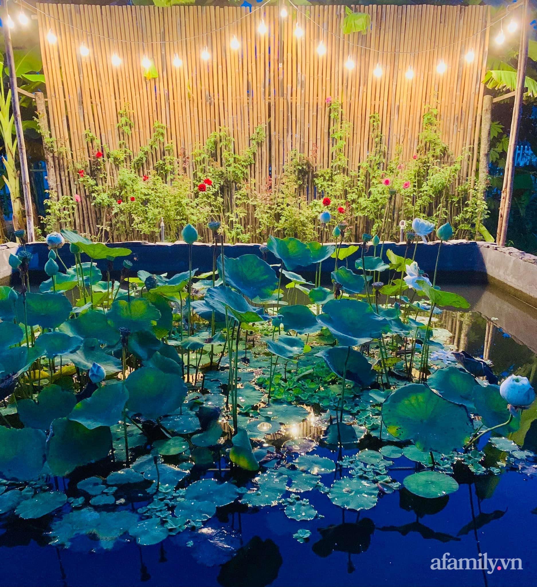Sống an yên giữa dịch COVID nhờ ao cá vườn cây xanh mát tốt tươi ở Bạc Liêu - Ảnh 4.