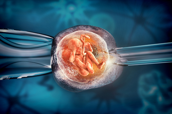 Bác sĩ chuyên khoa hỗ trợ sinh sản giải đáp loạt vấn đề của chị em phụ nữ liên quan đến vắc-xin Covid-19 - Ảnh 10.