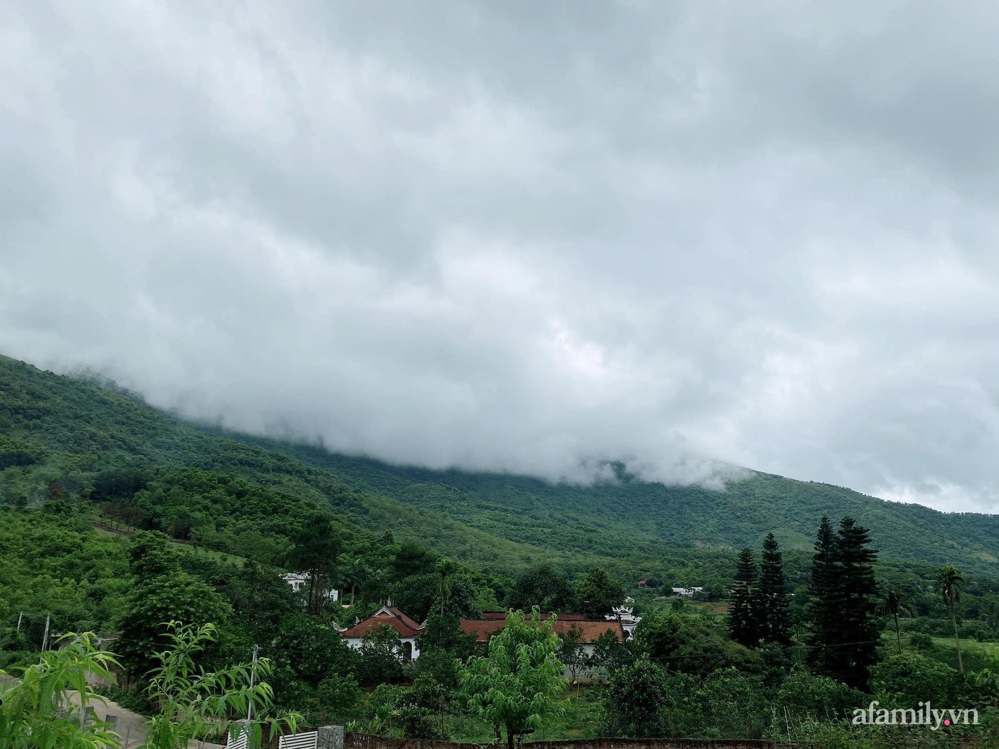 Căn nhà vườn trên núi đẹp an yên, tĩnh lặng với những xanh tươi đẹp đẽ ở ngoại thành Hà Nội - Ảnh 6.