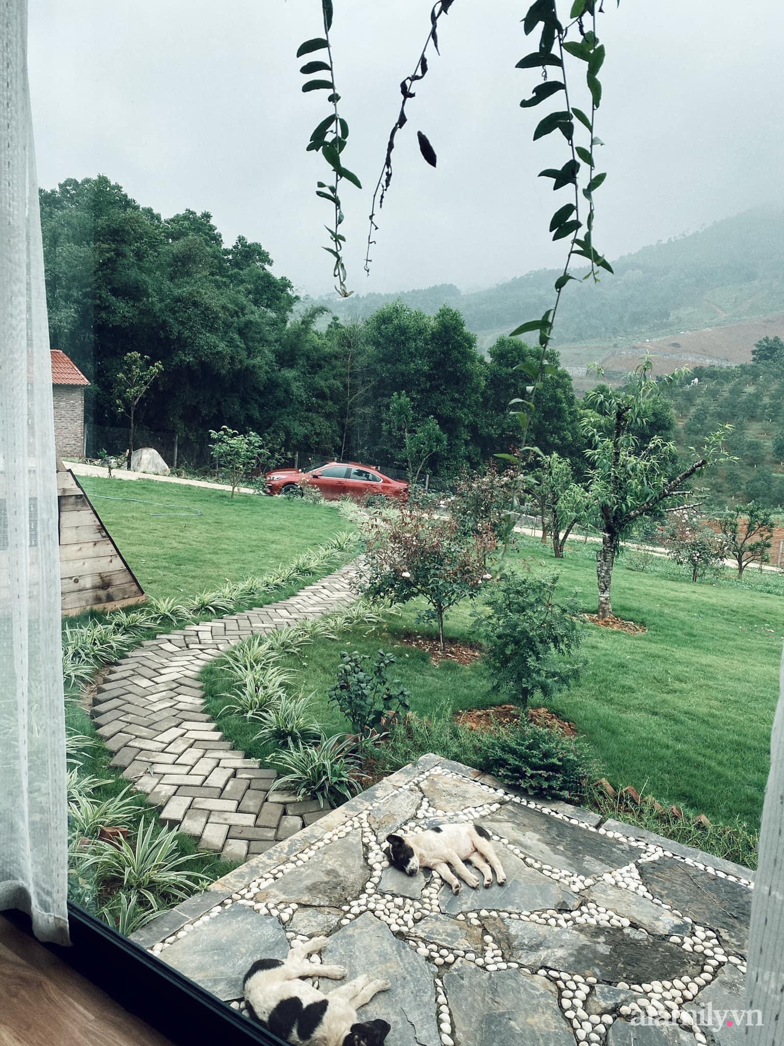 Căn nhà vườn trên núi đẹp an yên, tĩnh lặng với những xanh tươi đẹp đẽ ở ngoại thành Hà Nội - Ảnh 9.