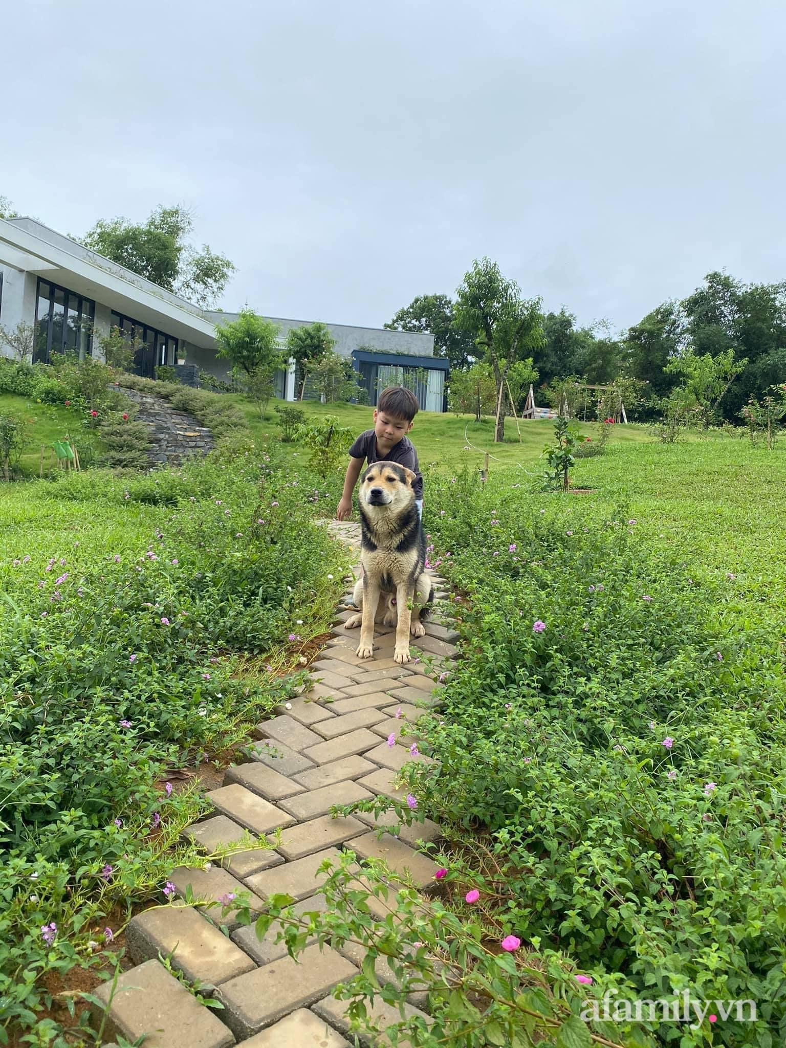 Căn nhà vườn trên núi đẹp an yên, tĩnh lặng với những xanh tươi đẹp đẽ ở ngoại thành Hà Nội - Ảnh 8.