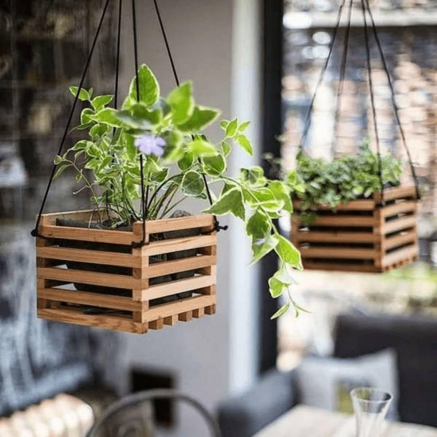 Những ý tưởng trồng cây treo tạo góc xanh tràn đầy sức sống cho mọi không gian - Ảnh 7.