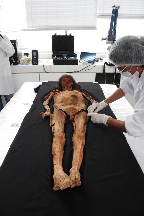 """Tái hiện khuôn mặt xác ướp quý bà từ xác ướp ghê rợn như """"quái vật"""", các nhà khoa học ngỡ ngàng nhan sắc người phụ nữ sống cách đây 1.600 năm - Ảnh 1."""