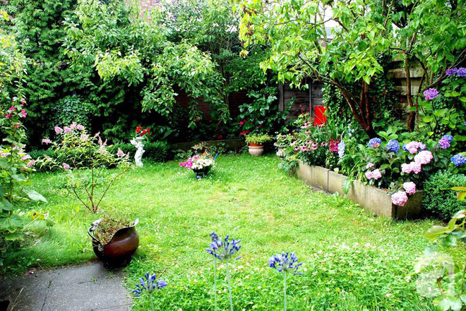 Khu vườn hoa nở suốt bốn mùa đẹp như trong mơ của đạo diễn Nguyễn Hải Anh - Ảnh 3.