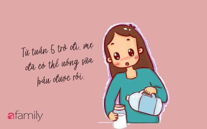 Nhật ký mẹ Bơ: 3 tháng đầu thai kỳ, hãy nắm chắc 5 điều cơ bản này để chọn sữa bầu cho mẹ khỏe, con thông minh! - Ảnh 3.