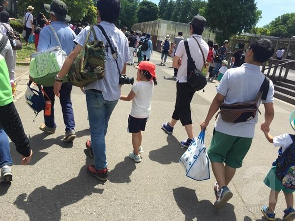 Theo chân một chuyến dã ngoại của trường mầm non ở Nhật - Ảnh 6.