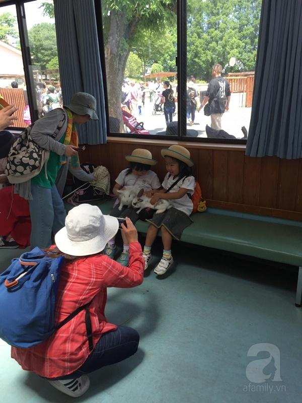 Theo chân một chuyến dã ngoại của trường mầm non ở Nhật - Ảnh 7.