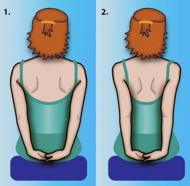 4 bài tập bả vai đơn giản giúp giảm đau vai, đẹp lưng, thon eo - Ảnh 1.