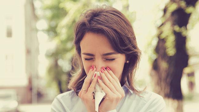 Chuyên gia Đông y bật mí nhà nào cũng có húng chanh vào mùa đông thì chẳng khác gì có thuốc quý trong nhà - Ảnh 4.