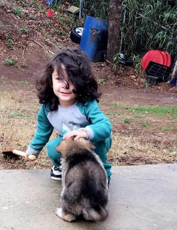 Mới 7 tháng tuổi cậu bé này đã sở hữu mái tóc dài như ngôi sao nhạc rock - Ảnh 12.