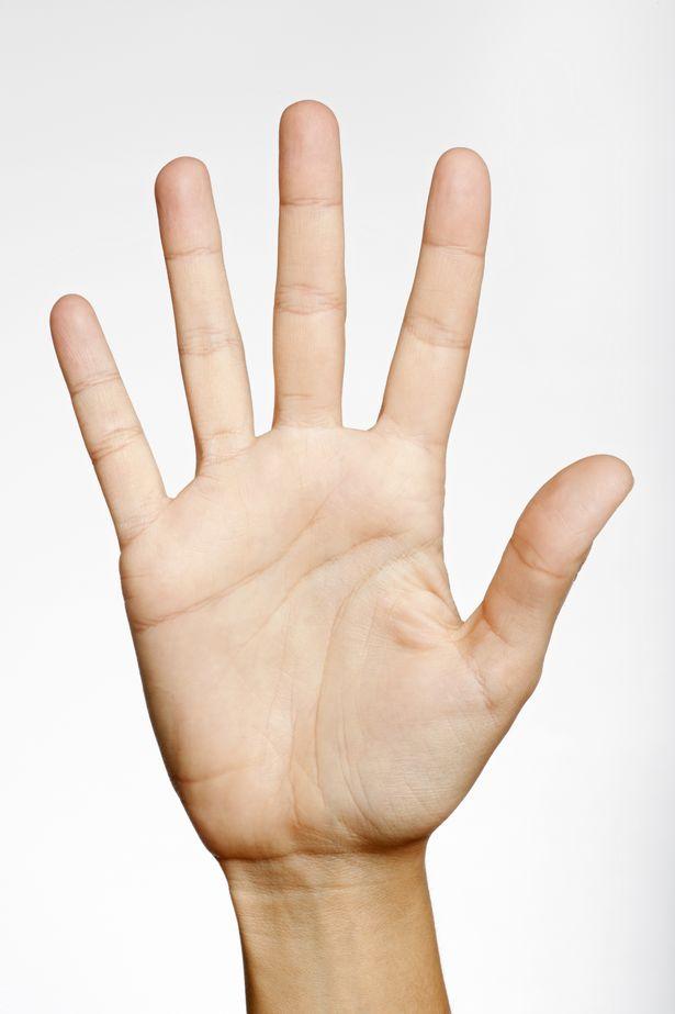 Ai cũng có đường chỉ tay nhưng không biết chúng hình thành như thế nào và có tác dụng gì - Ảnh 2.