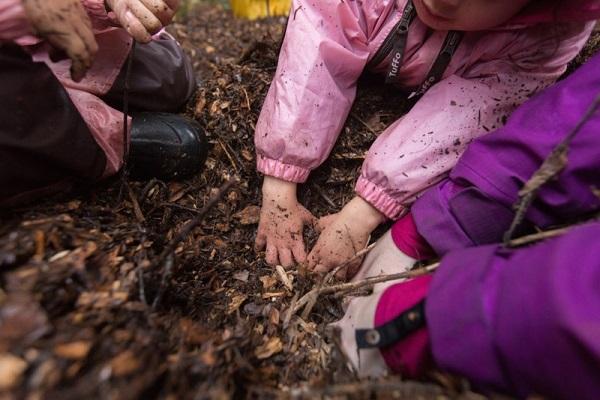 Chơi đùa và leo trèo trong rừng - Đây là cách trẻ em Đức đi học mẫu giáo - Ảnh 3.