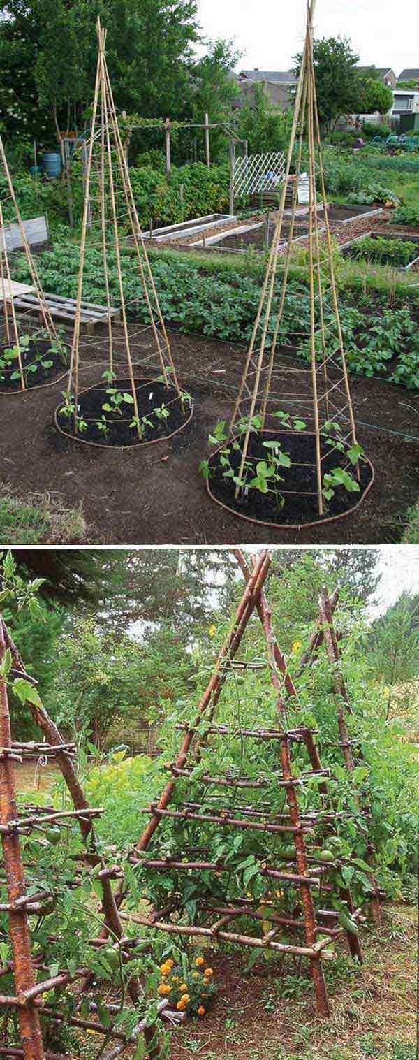 Tham khảo ngay những cách sáng tạo này để biến mảnh đất trống thành vườn rau đẹp mắt - Ảnh 7.