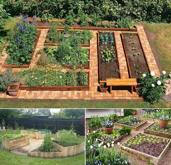 Tham khảo ngay những cách sáng tạo này để biến mảnh đất trống thành vườn rau đẹp mắt - Ảnh 10.