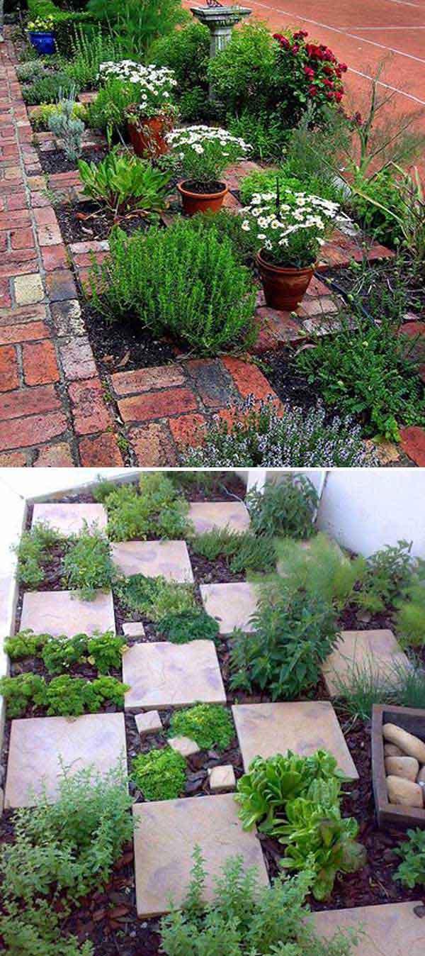 Tham khảo ngay những cách sáng tạo này để biến mảnh đất trống thành vườn rau đẹp mắt - Ảnh 17.