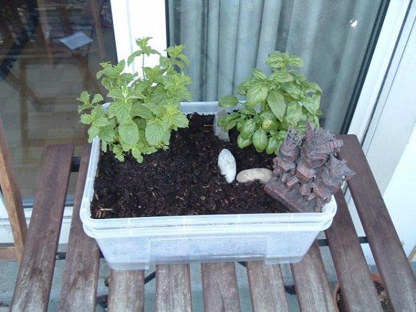 Công việc làm vườn, trồng rau sẽ vô cùng nhàn nhã nếu biết 10 cách tự tưới nước cho cây sau đây - Ảnh 1.