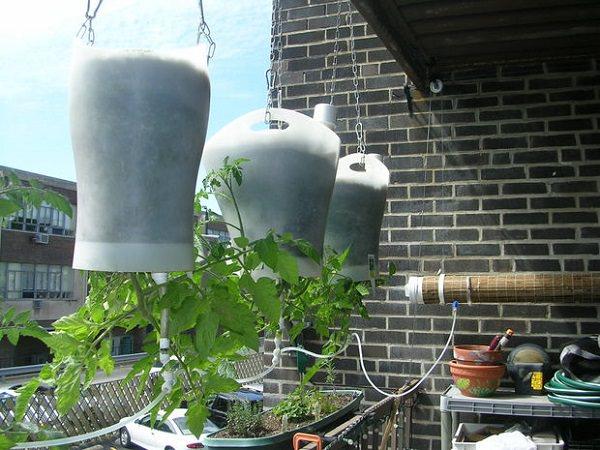 Công việc làm vườn, trồng rau sẽ vô cùng nhàn nhã nếu biết 10 cách tự tưới nước cho cây sau đây - Ảnh 6.