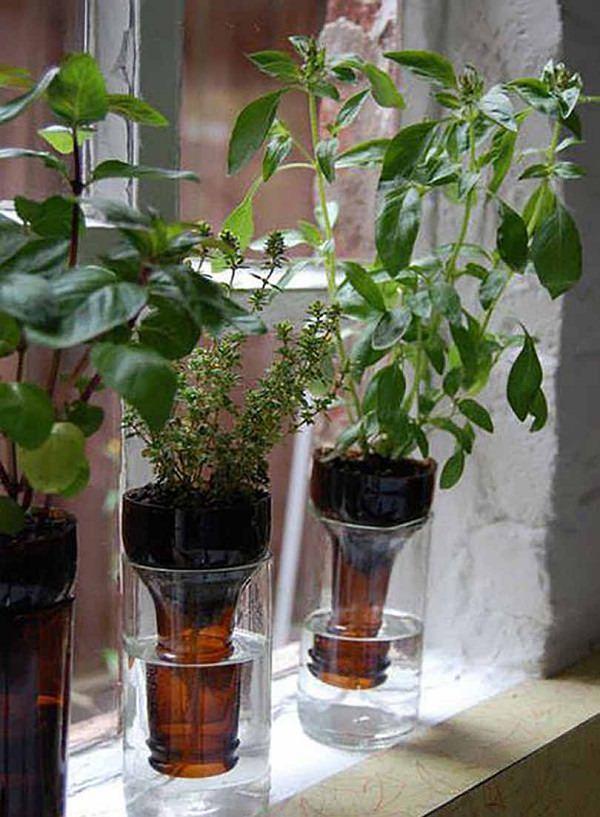 Công việc làm vườn, trồng rau sẽ vô cùng nhàn nhã nếu biết 10 cách tự tưới nước cho cây sau đây - Ảnh 7.