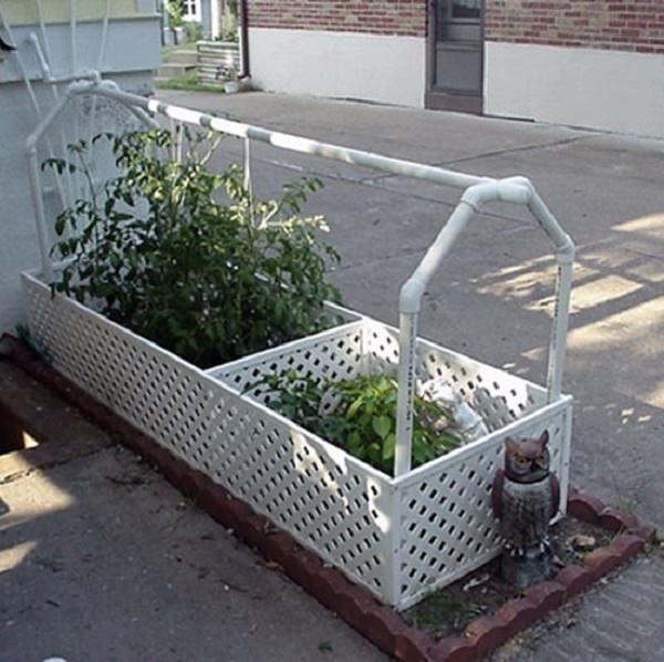 Công việc làm vườn, trồng rau sẽ vô cùng nhàn nhã nếu biết 10 cách tự tưới nước cho cây sau đây - Ảnh 8.