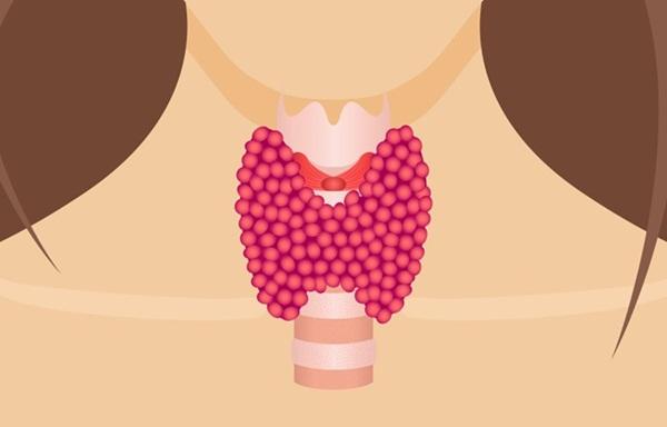 Có thể bạn chưa biết: Bệnh nội tiết này sẽ ảnh hưởng đến việc tăng hay giảm cân một cách rất bất ngờ - Ảnh 1.