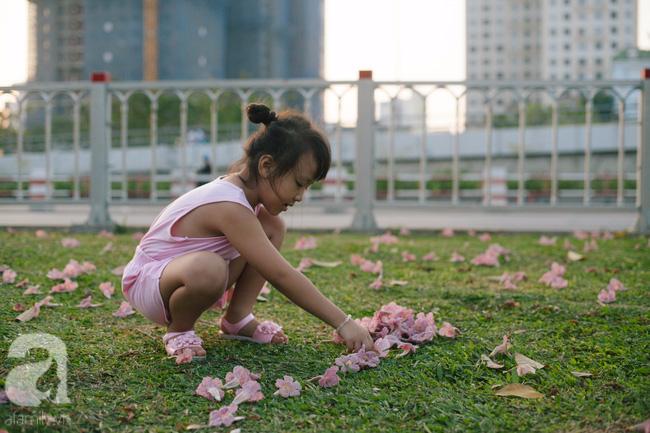 Một ngày nắng chói chang, ngắm hoa kèn hồng để thấy lòng lịm mát giữa Sài Gòn - Ảnh 12.