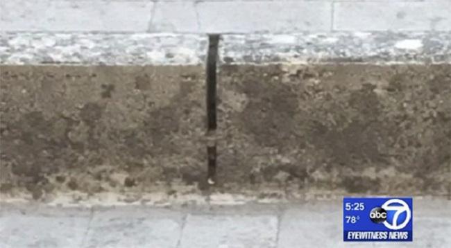 Đến Italy du lịch, cặp vợ chồng không ngờ tìm lại được báu vật đánh rơi 9 năm trước - Ảnh 2.