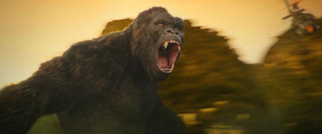 The Face mùa 2 chưa thi đã tranh cãi; Kong gây sốt chưa từng thấy ở Việt Nam - Ảnh 3.
