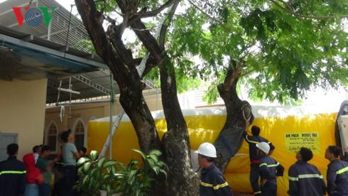Hàng chục cảnh sát cứu hộ kẻ nghi ngáo đá ngồi trên ngọn cây cao 15m - Ảnh 2.