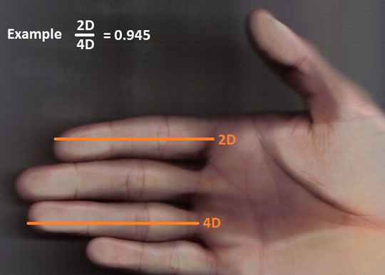 Khoa học chứng minh: Đàn ông tốt với phụ nữ hay không có thể tiết lộ qua đặc điểm trên bàn tay - Ảnh 1.