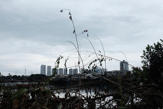 Nỗi hoang mang của người dân tại cù lao sắp bị giải tỏa ở Sài Gòn - Ảnh 15.