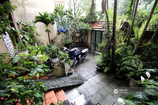 Lần đầu hé lộ ngôi nhà xinh xắn, rợp bóng cây xanh ngoài đời thật của ông trùm Phan Thị - NSND Hoàng Dũng - Ảnh 2.