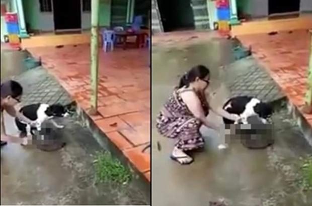 Phẫn nộ clip người phụ nữ thản nhiên chặt chân chú chó còn sống ngay trước hiên nhà - Ảnh 1.