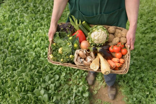 Thực phẩm organic – Xu hướng ăn uống được lòng người tiêu dùng thông thái - Ảnh 2.